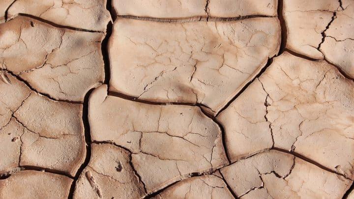 Un traitement des boues efficace permet de lutter contre la pollution