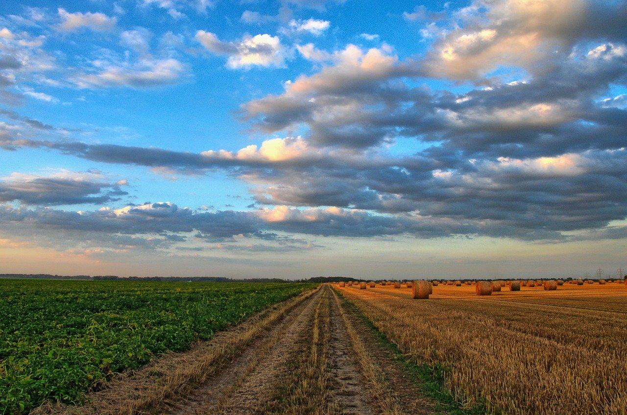 Comment stocker les effluents agricoles?